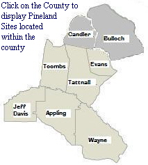 map_pineland_counties